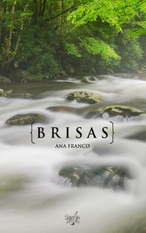 Brisas